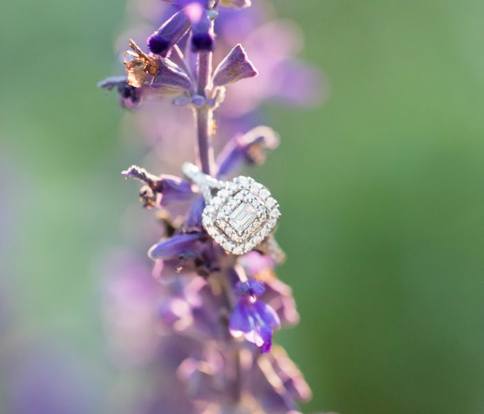Where To Begin With Wedding Planning | Engagement Advice | Chesapeake Wedding Photographer